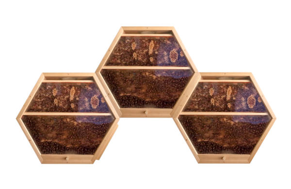 3 hex hives