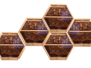5 hex hives